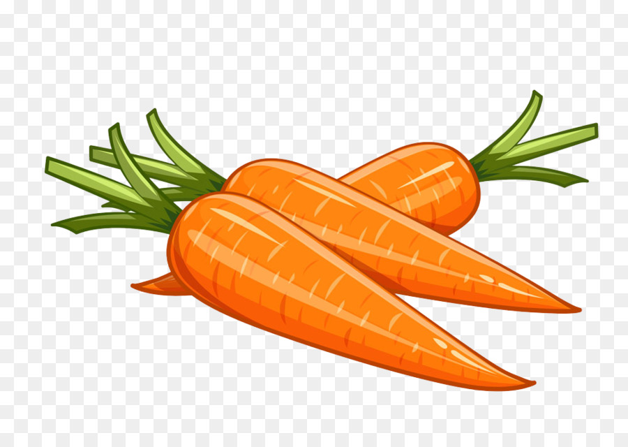 Download Carrot Vector Png Png Gif Base ✓ free for commercial use ✓ high quality images. download carrot vector png png gif base