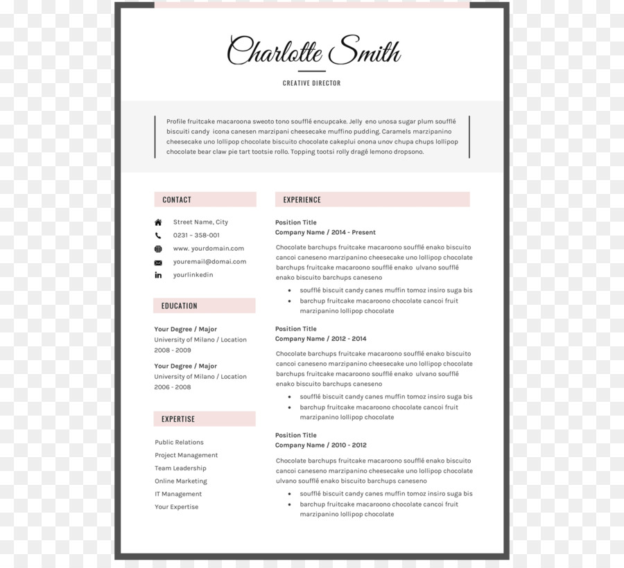 Resume Template Microsoft Word Curriculum Vitae Font
