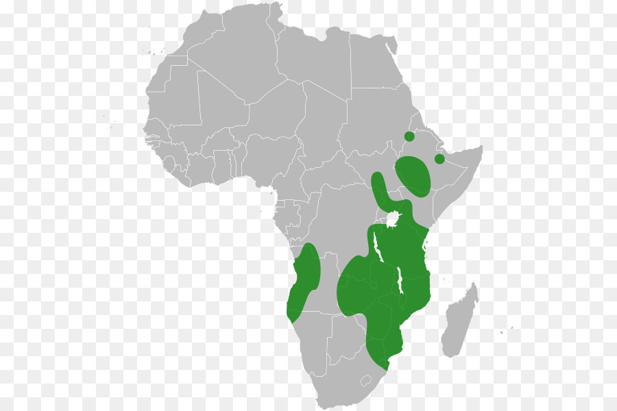 African Union Map.Africa African Union Southern African Development Community Green Map